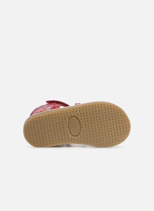 Sandales et nu-pieds Bopy Habilam Kouki Multicolore vue haut