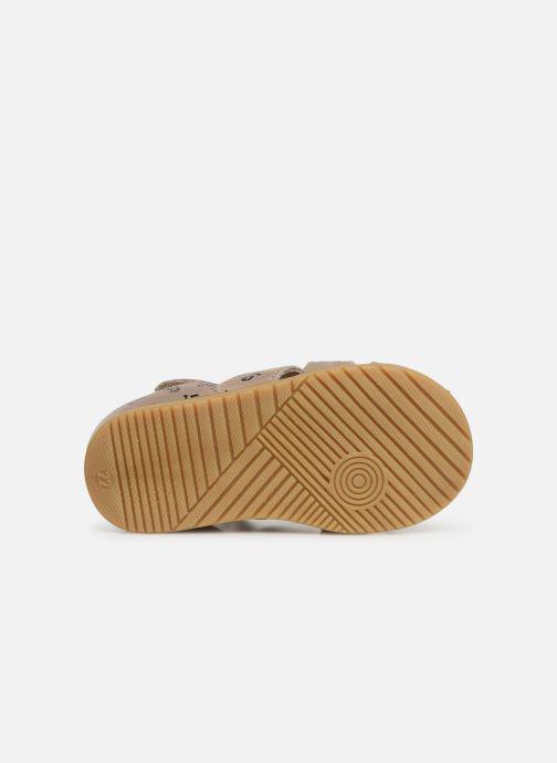 Sandales et nu-pieds Bopy Racine Beige vue haut