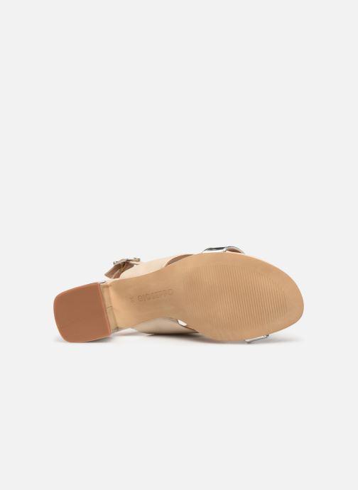 Sandali e scarpe aperte Gioseppo 48545 Beige immagine dall'alto
