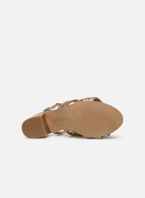Sandales et nu-pieds Gioseppo 49070 Or et bronze vue haut