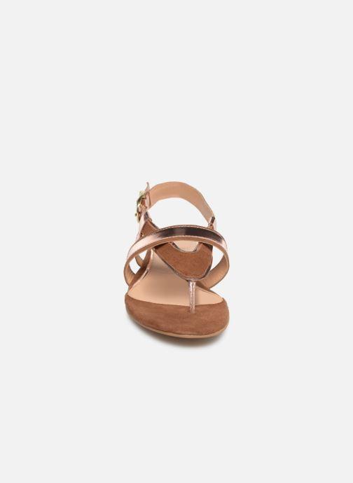 Sandales et nu-pieds Gioseppo 47244 Marron vue portées chaussures