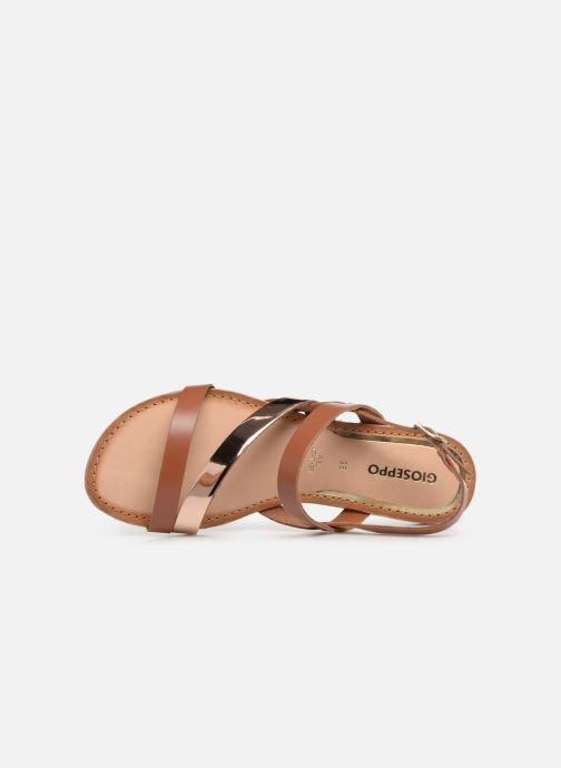 Sandales et nu-pieds Gioseppo 47798 Marron vue gauche