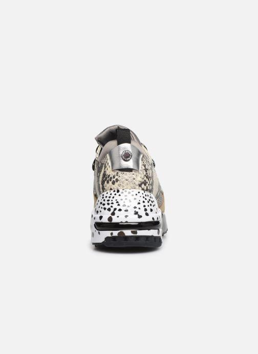 Sneakers Steve Madden CLIFF Grijs rechts