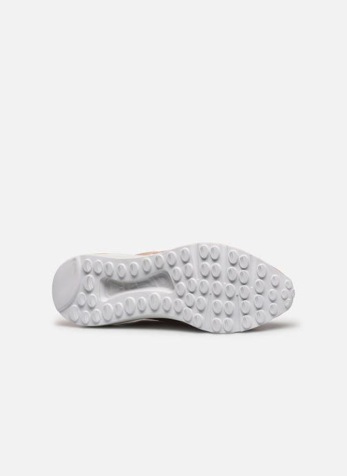 Sneakers Steve Madden CLIFF Roze boven