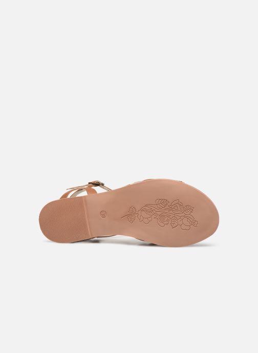 Sandales et nu-pieds Steve Madden OSCAR Marron vue haut