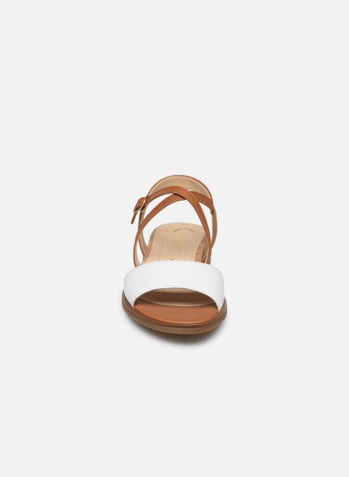 Sandales et nu-pieds Gabor Dulcé Marron vue portées chaussures