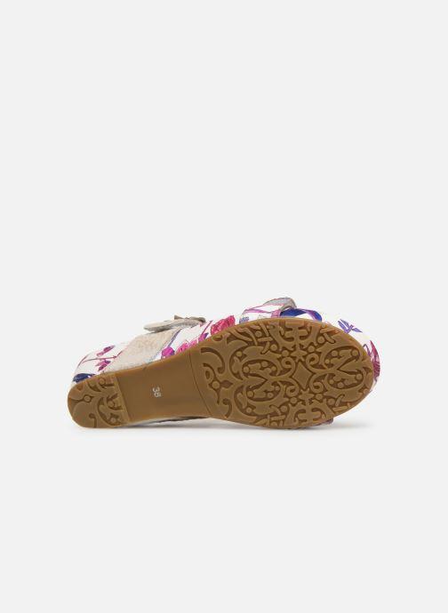 Sandales et nu-pieds Laura Vita Beclindao 60 Beige vue haut