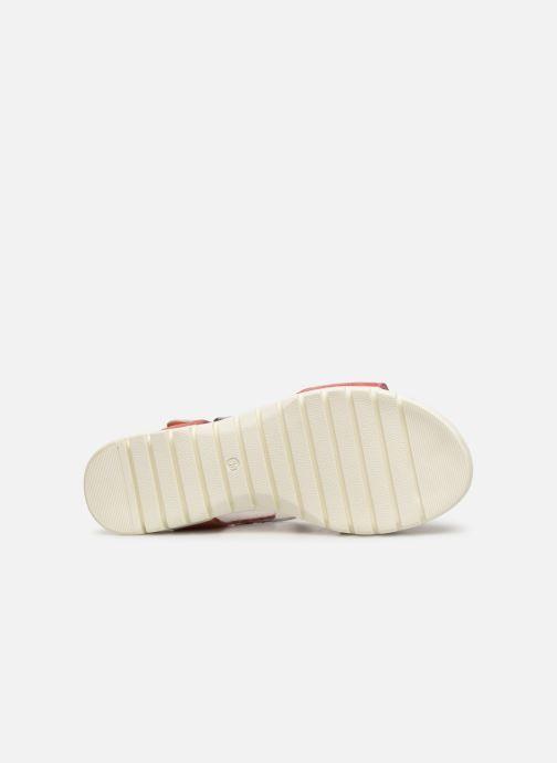 Sandales et nu-pieds Laura Vita DOBBY 039 Orange vue haut