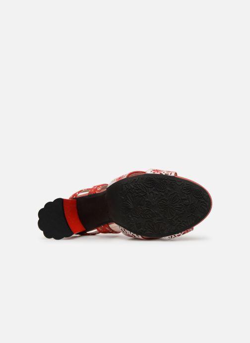 Sandali e scarpe aperte Laura Vita FICDJIO 0191 Rosso immagine dall'alto
