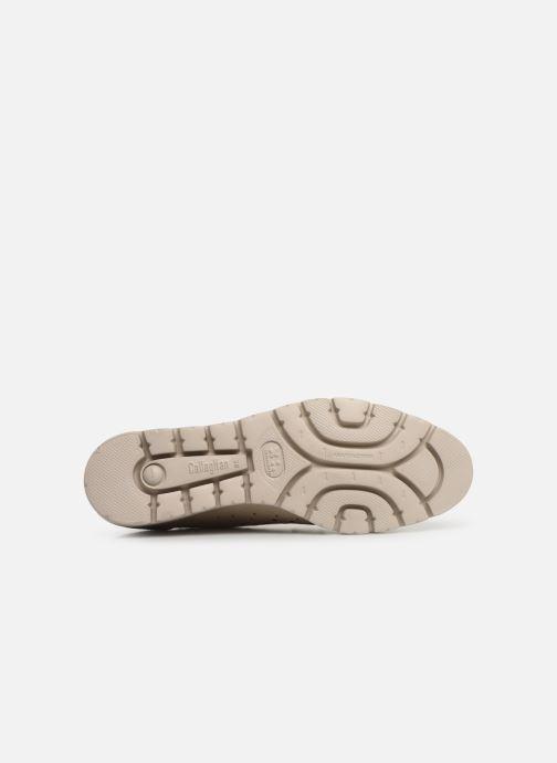 Chaussures à lacets Callaghan Haman 2 Beige vue haut