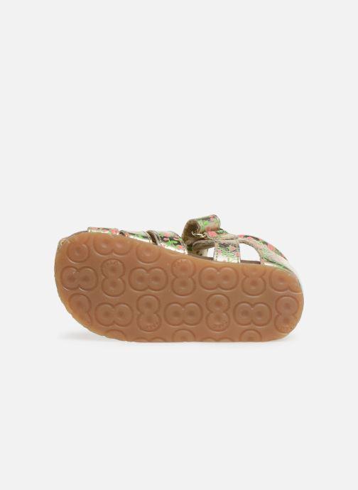 Sandales et nu-pieds Naturino Falcotto Bartlett Or et bronze vue haut