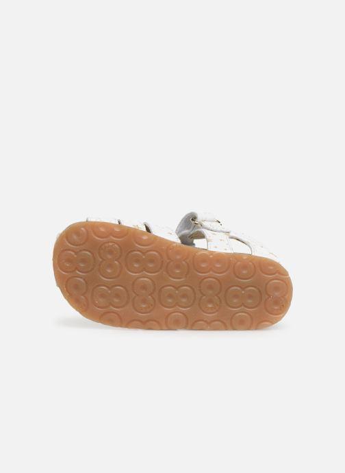 Sandales et nu-pieds Naturino Falcotto Bartlett Blanc vue haut