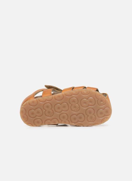 Sandali e scarpe aperte Naturino Falcotto Bartlett Marrone immagine dall'alto