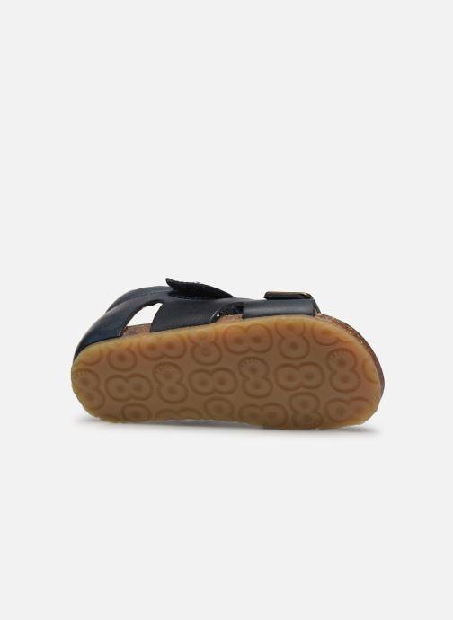 Sandali e scarpe aperte Naturino Falcotto Bea Azzurro immagine dall'alto