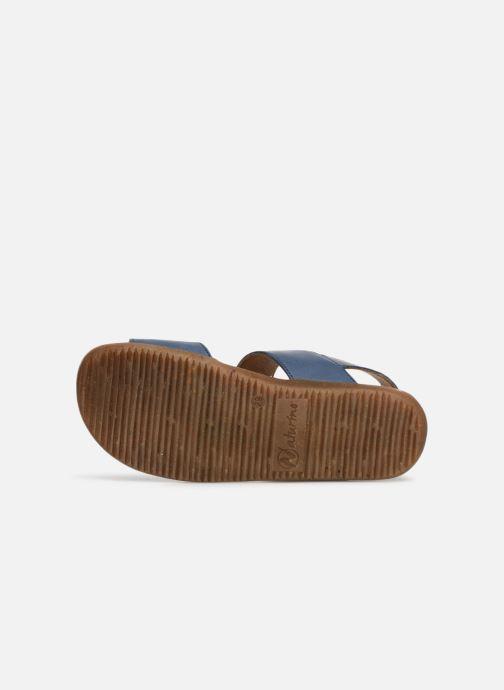 Sandales et nu-pieds Naturino Bush Bleu vue haut