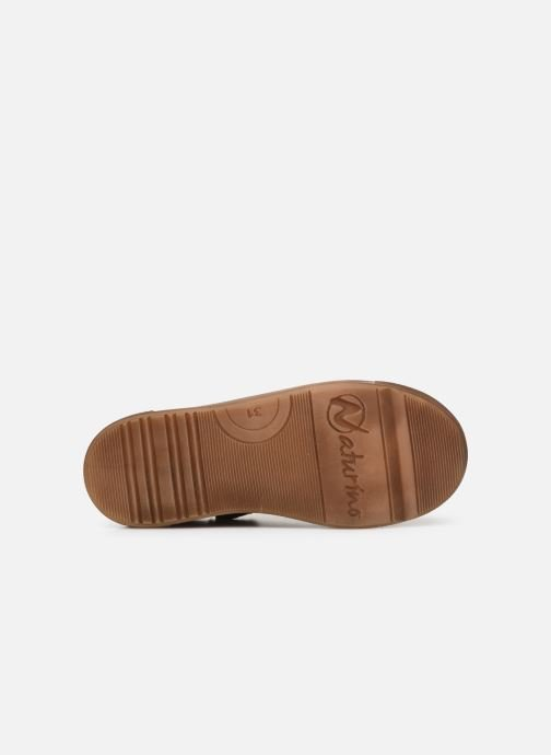 Trainers Naturino Eindhoven Zip Brown view from above