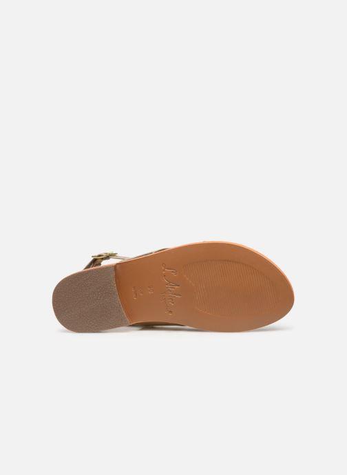 Sandales et nu-pieds L'Atelier Tropézien SB813 Or et bronze vue haut