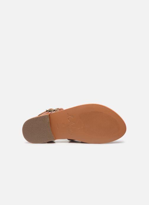 Sandales et nu-pieds L'Atelier Tropézien SB917 Marron vue haut
