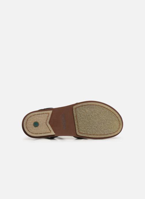 Sandales et nu-pieds Kickers MEENWICH Noir vue haut