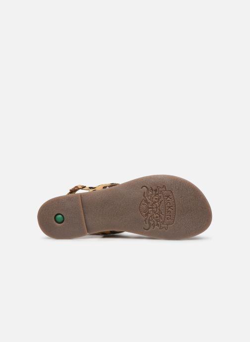 Sandalen Kickers DIBA braun ansicht von oben