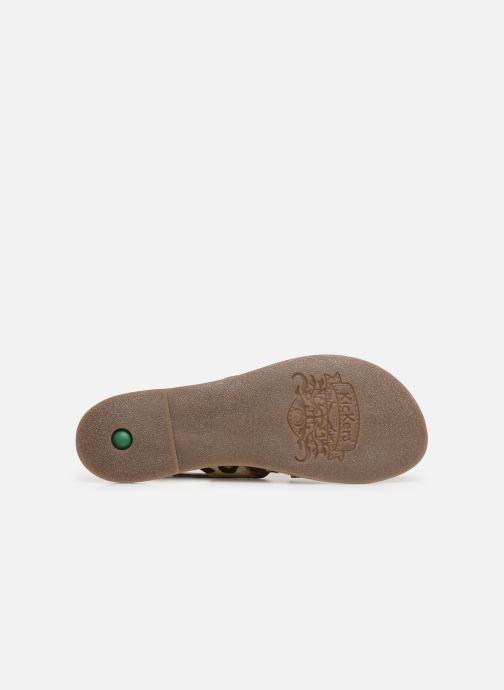Sandales et nu-pieds Kickers DILANI Beige vue haut