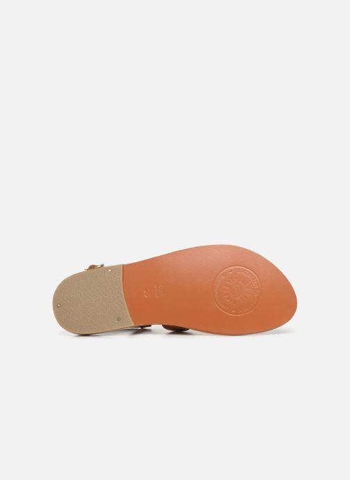 Sandales et nu-pieds L'Atelier Tropézien SH666 Marron vue haut