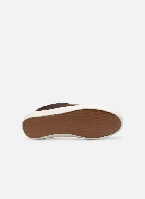 Trainers Jack & Jones Jfwvision Classic Mixed Brown view from above
