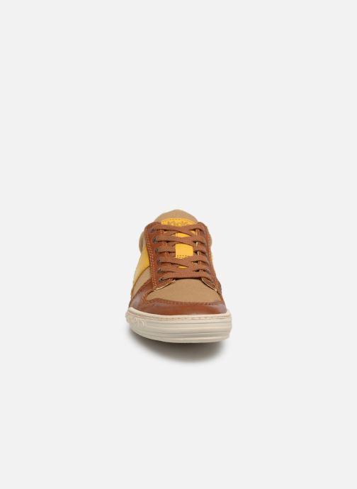 Sneakers Kickers JIMMY Marrone modello indossato