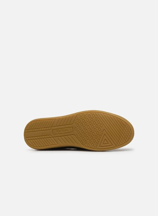 Sneakers Kickers THEORY Marrone immagine dall'alto