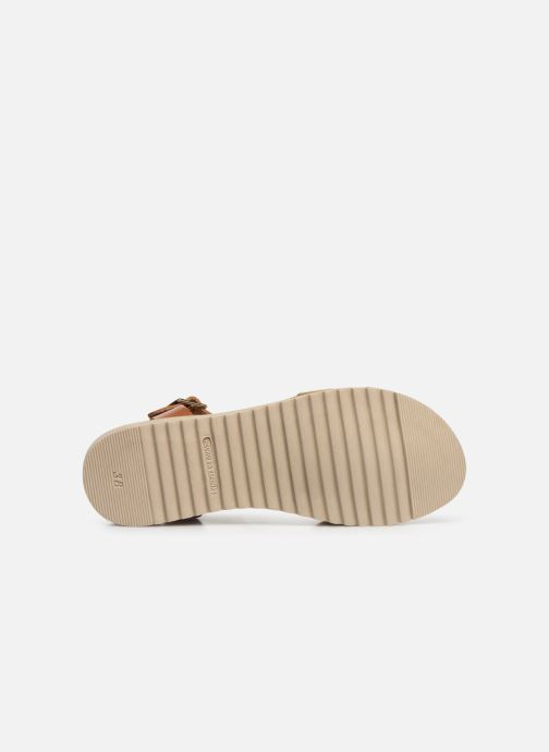 Sandales et nu-pieds Georgia Rose Diandra Soft Marron vue haut