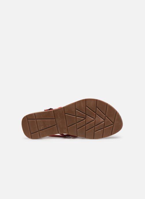 Sandales et nu-pieds Chattawak SHIRLEY Rouge vue haut