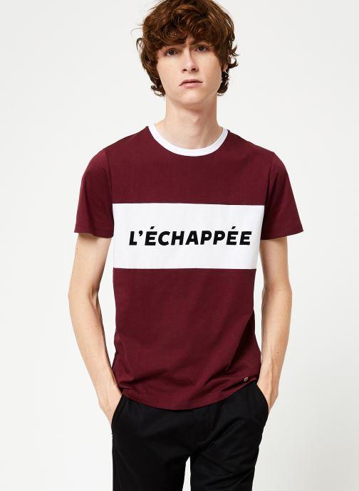 Vêtements Faguo ARCY T-SHIRT COTTON Bordeaux vue droite