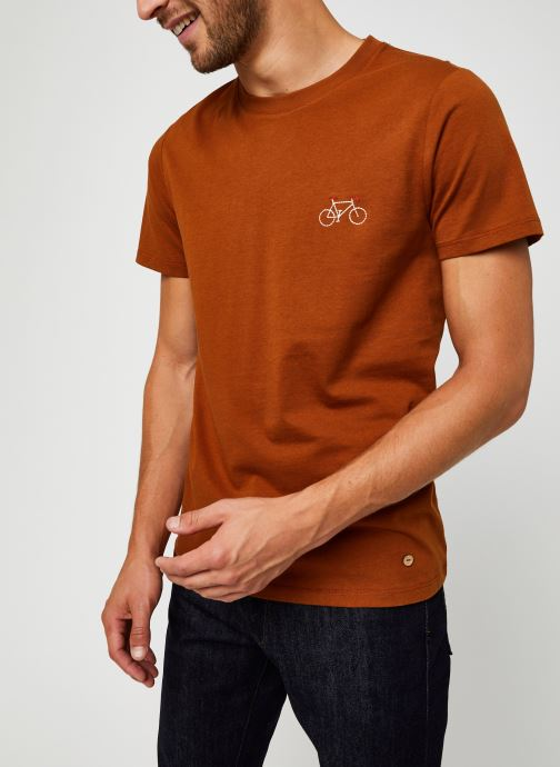 Vêtements Faguo ARCY T-SHIRT COTTON Marron vue droite