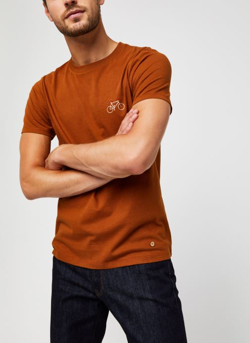 Vêtements Faguo ARCY T-SHIRT COTTON Marron vue détail/paire