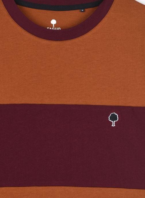 Vêtements Faguo ARCY T-SHIRT COTTON Marron vue face