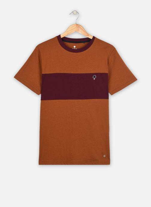 Vêtements Faguo ARCY T-SHIRT COTTON Marron vue détail/paire