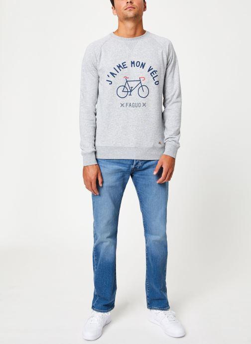 Vêtements Faguo DARNEY SWEAT COTTON Gris vue bas / vue portée sac