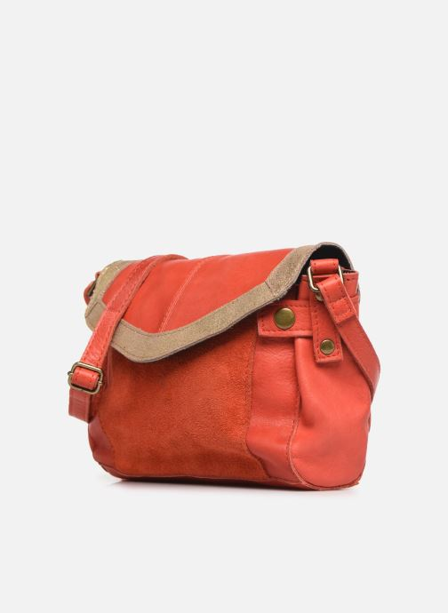 Bolsos de mano Pieces ISAURA LEATHER SMALL CROSSBODY Rosa vista del modelo