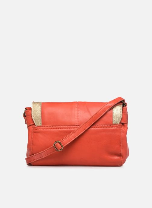 Bolsos de mano Pieces ISAURA LEATHER SMALL CROSSBODY Rosa vista de frente