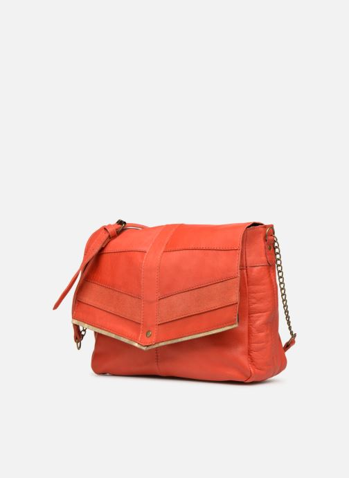 Bolsos de mano Pieces FRANCES LEATHER LARGE CROSSBODY Rosa vista del modelo