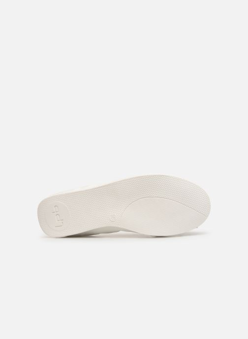 Ballet pumps Les P'tites Bombes EDEN White view from above