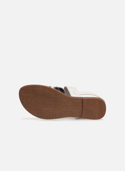 Sandali e scarpe aperte Les P'tites Bombes RACHEL Bianco immagine dall'alto
