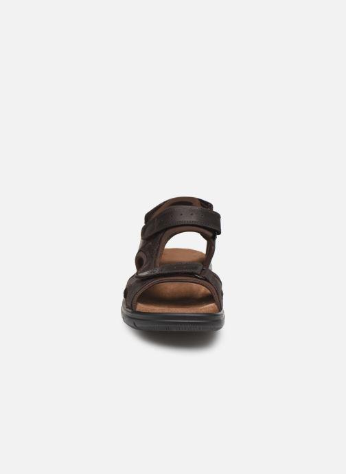 Sandales et nu-pieds Panama Jack Salton Marron vue portées chaussures