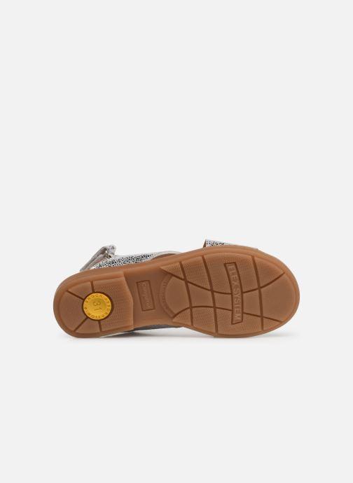 Sandales et nu-pieds Conguitos Ambrosia Argent vue haut
