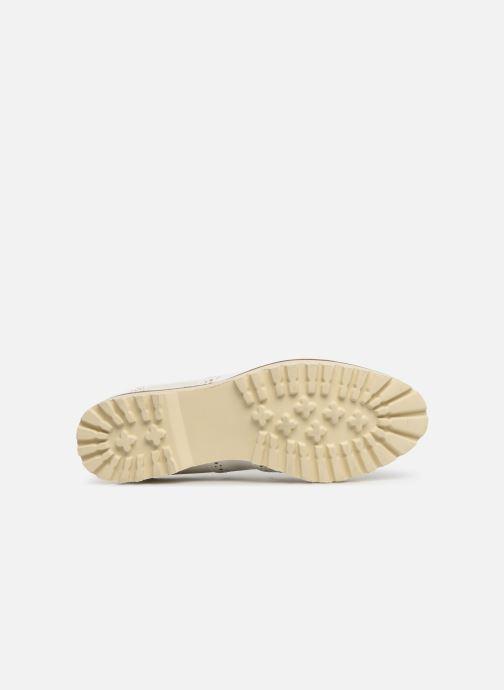 Zapatos con cordones Les P'tites Bombes GISELE Blanco vista de arriba