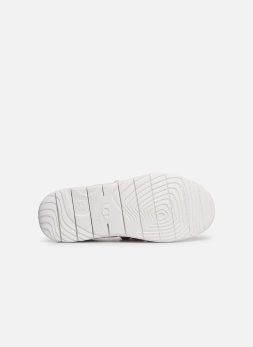 Baskets UGG Seaway Sneaker K Rose vue haut