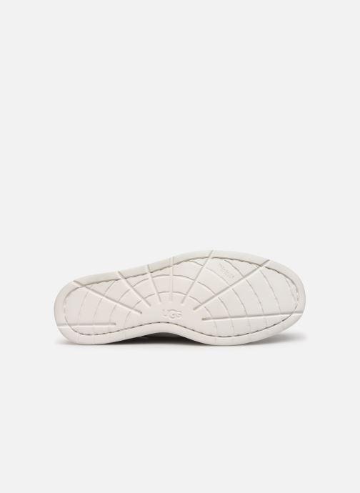 Zapatos con cordones UGG Beach Moc Chukka Gris vista de arriba