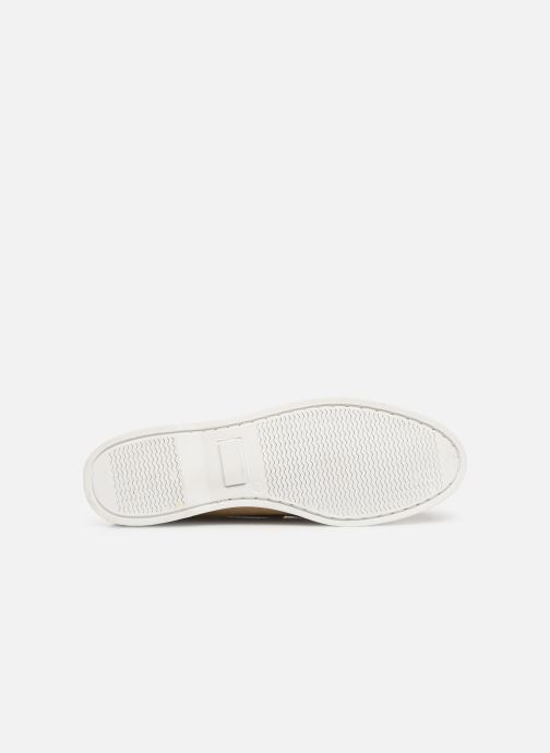 Zapatos con cordones Marvin&Co Satingh Marrón vista de arriba