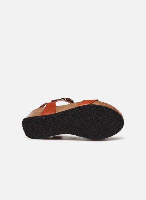 Sandales et nu-pieds Plakton So Kiss Marron vue haut