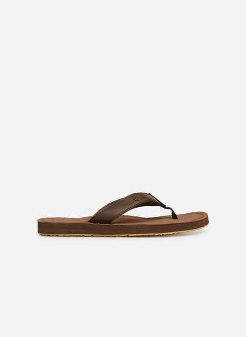 Flip flops Cool Shoe Pilat Brown back view